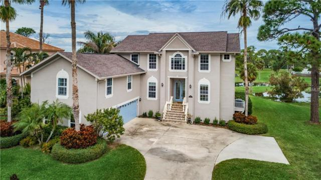 2100 N Pointe Alexis Drive, Tarpon Springs, FL 34689 (MLS #W7807887) :: The Light Team