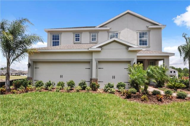 361 Summer Squall Road, Davenport, FL 33837 (MLS #W7807905) :: Remax Alliance
