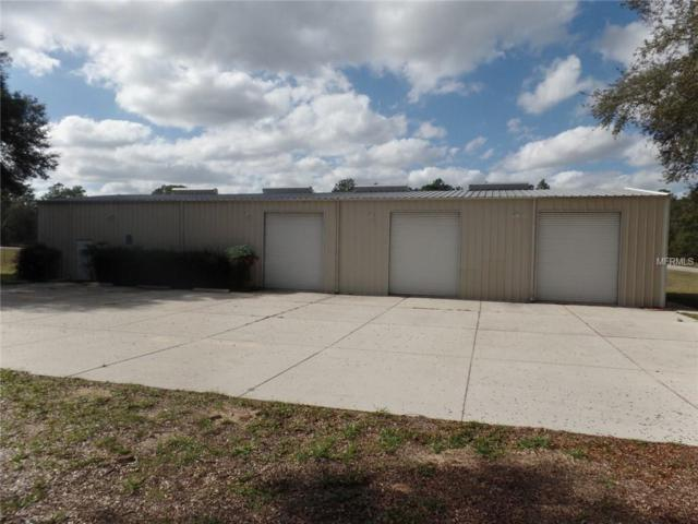 803 E Overdrive Circle, Hernando, FL 34442 (MLS #W7808088) :: Griffin Group