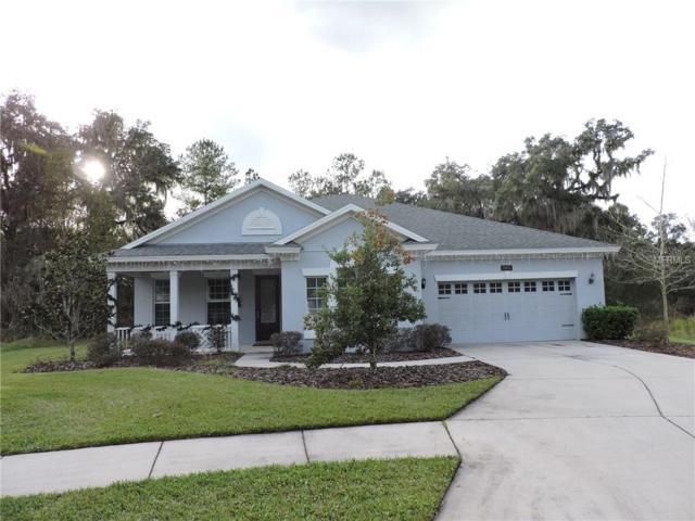 19651 Cypress Pond Court, Brooksville, FL 34601 (MLS #W7808152) :: Homepride Realty Services