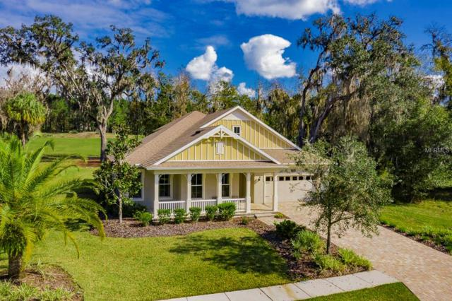 4718 Southern Valley Loop, Brooksville, FL 34601 (MLS #W7808156) :: Griffin Group