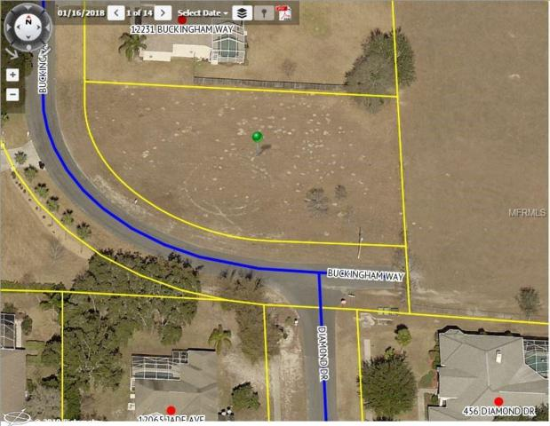 12255 Buckingham Way, Spring Hill, FL 34609 (MLS #W7808162) :: Griffin Group