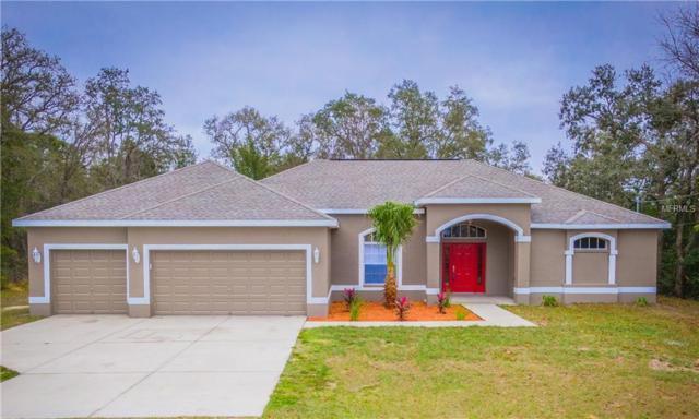 13016 Hooper Road, Weeki Wachee, FL 34614 (MLS #W7808259) :: Homepride Realty Services