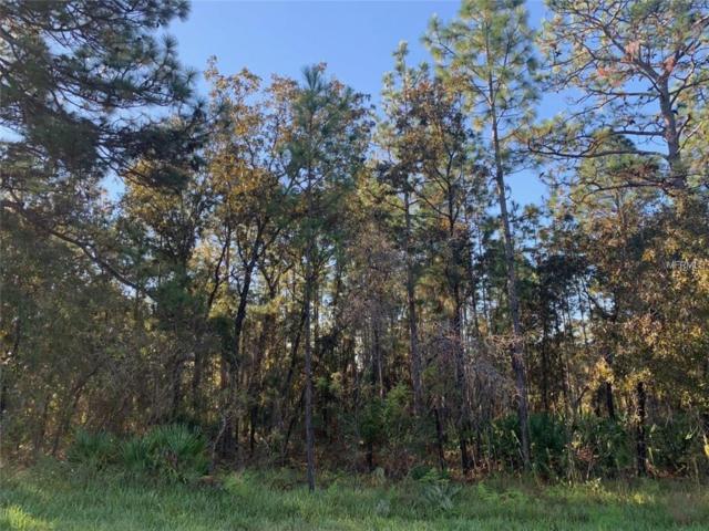 10448 Wood Owl Avenue, Weeki Wachee, FL 34614 (MLS #W7808267) :: Homepride Realty Services