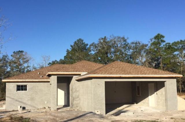 14463 E Duck Hawk Road, Brooksville, FL 34614 (MLS #W7808439) :: Homepride Realty Services