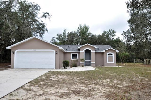 34168 Bernie Street, Dade City, FL 33523 (MLS #W7808466) :: Jeff Borham & Associates at Keller Williams Realty