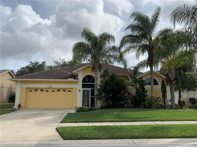 4524 Anaconda Drive, New Port Richey, FL 34655 (MLS #W7808476) :: Premium Properties Real Estate Services