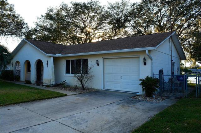 4149 Cotton Tail Drive, New Port Richey, FL 34653 (MLS #W7808481) :: Jeff Borham & Associates at Keller Williams Realty