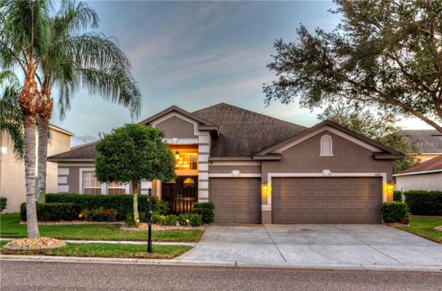 1620 Sweetspire Drive, Trinity, FL 34655 (MLS #W7808488) :: Griffin Group