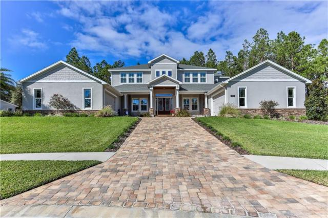 20131 English Walnut Place, Brooksville, FL 34601 (MLS #W7808537) :: Griffin Group