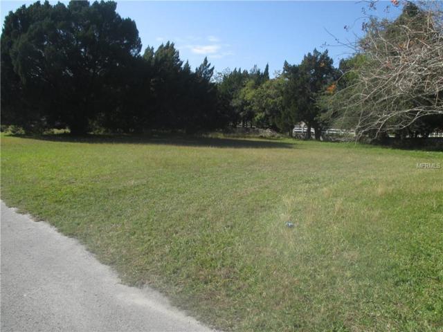 Coral, Hudson, FL 34667 (MLS #W7808538) :: Griffin Group