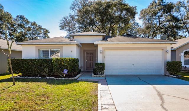 30348 Birdhouse Drive, Wesley Chapel, FL 33545 (MLS #W7808563) :: Team Bohannon Keller Williams, Tampa Properties