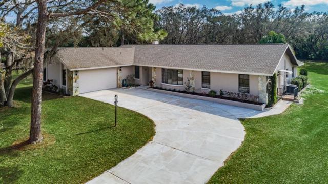 6706 Waldorf Court, New Port Richey, FL 34655 (MLS #W7808564) :: Griffin Group