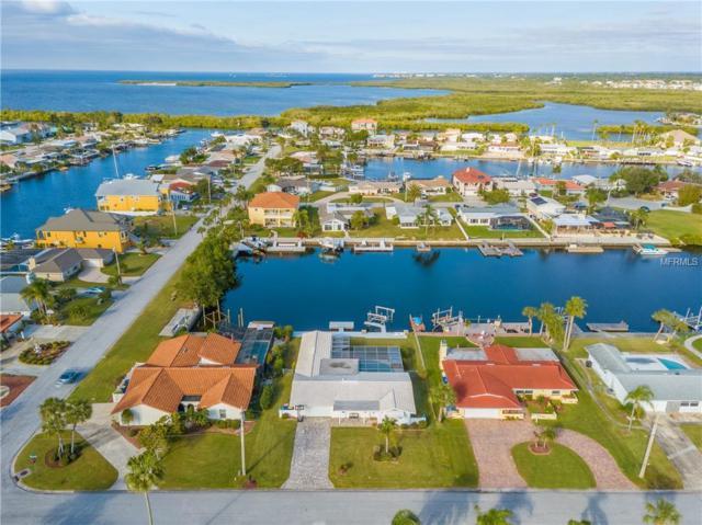 3617 Harborview Court, New Port Richey, FL 34652 (MLS #W7808573) :: Jeff Borham & Associates at Keller Williams Realty