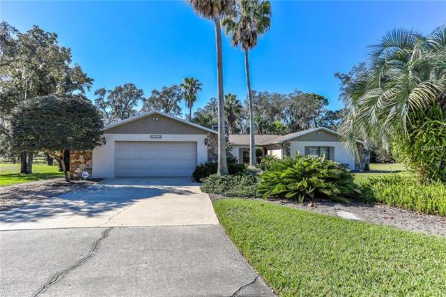 18901 Lansford Drive, Hudson, FL 34667 (MLS #W7808592) :: Jeff Borham & Associates at Keller Williams Realty