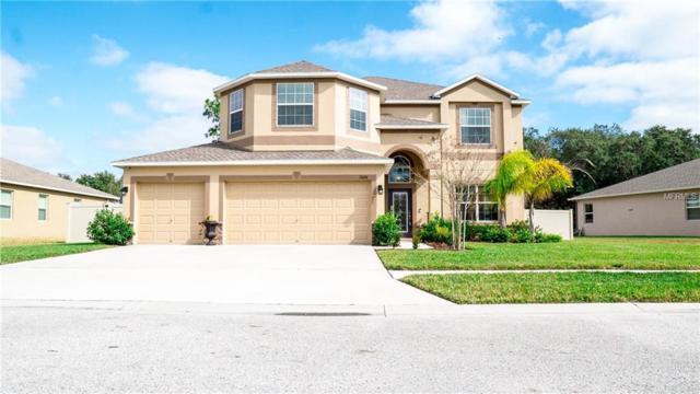 13636 Bee Tree Court, Hudson, FL 34669 (MLS #W7808597) :: Jeff Borham & Associates at Keller Williams Realty
