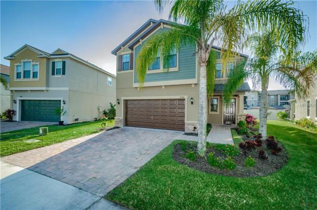 11798 Lake Boulevard, New Port Richey, FL 34655 (MLS #W7808600) :: Griffin Group