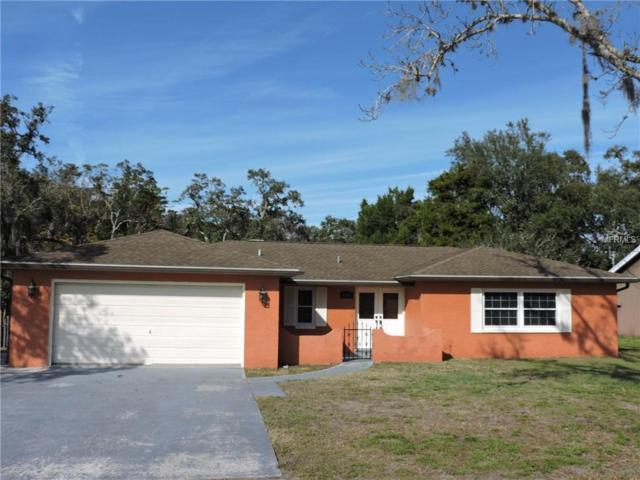 6241 Hillview Road, Spring Hill, FL 34606 (MLS #W7808624) :: RE/MAX Realtec Group