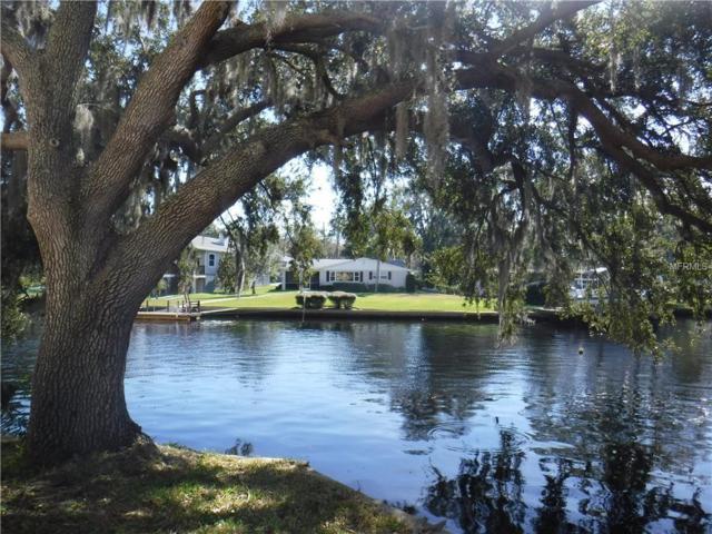 5432 Acorn Street, New Port Richey, FL 34652 (MLS #W7808647) :: Homepride Realty Services