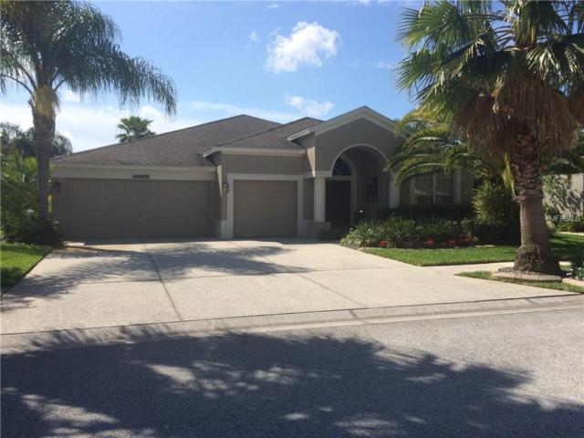 5236 Strike The Gold Lane, Wesley Chapel, FL 33544 (MLS #W7808654) :: Griffin Group