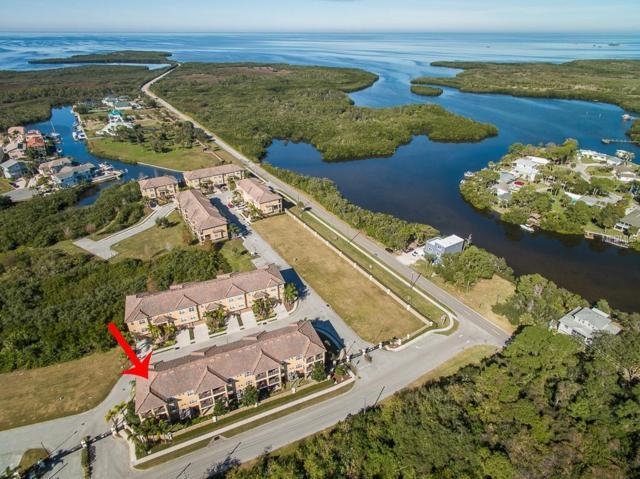 6514 Sand Shore Lane, New Port Richey, FL 34652 (MLS #W7808669) :: The Duncan Duo Team