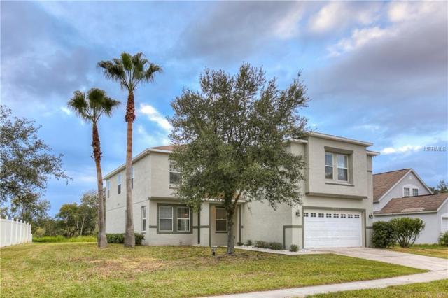 5023 Prairie View Way, Wesley Chapel, FL 33545 (MLS #W7808671) :: Griffin Group