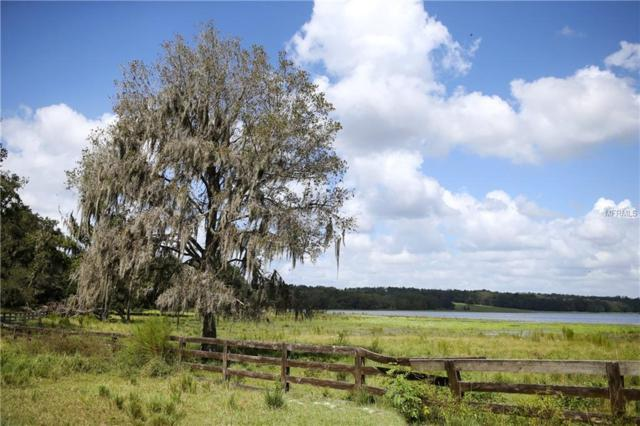 2461 Fari Fortune Lane, Brooksville, FL 34602 (MLS #W7808674) :: Homepride Realty Services
