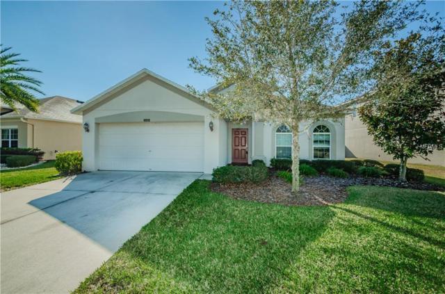 18910 Narimore Drive, Land O Lakes, FL 34638 (MLS #W7808678) :: Delgado Home Team at Keller Williams