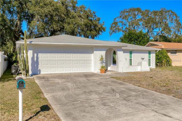 7315 San Miguel Drive, Port Richey, FL 34668 (MLS #W7808999) :: The Duncan Duo Team