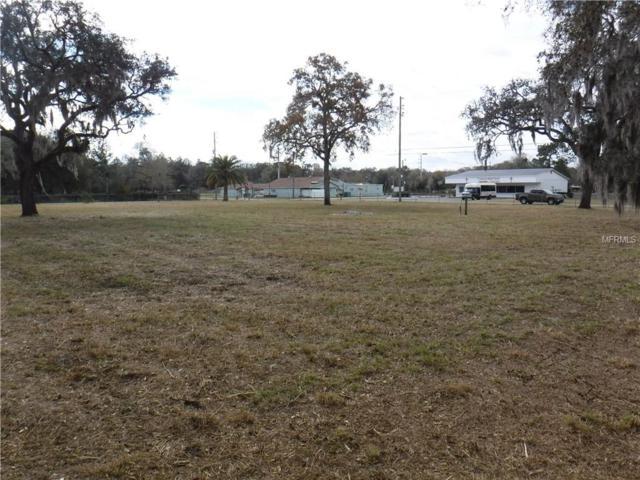11460 Osceola Drive, New Port Richey, FL 34654 (MLS #W7809044) :: The Duncan Duo Team