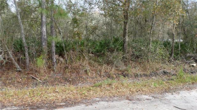 Ruskin / Tanner, New Port Richey, FL 34654 (MLS #W7809182) :: RE/MAX Realtec Group