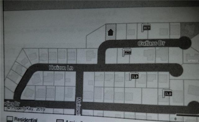 Cutlass Drive, Hudson, FL 34667 (MLS #W7809259) :: Team Bohannon Keller Williams, Tampa Properties