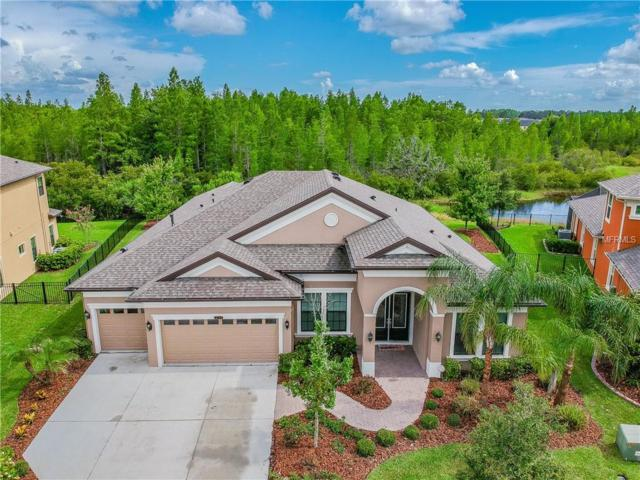 8254 Swiss Chard Circle, Land O Lakes, FL 34637 (MLS #W7809387) :: RE/MAX CHAMPIONS