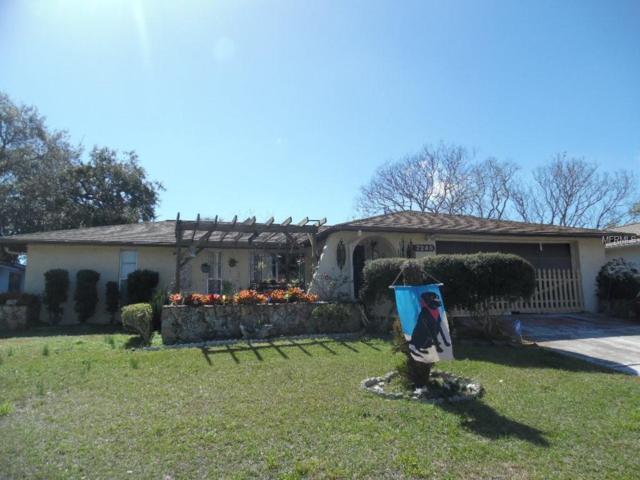 7246 Stone Road, Port Richey, FL 34668 (MLS #W7809408) :: The Duncan Duo Team