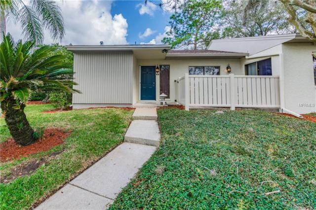 50 Tads Trail, Oldsmar, FL 34677 (MLS #W7809453) :: SANDROC Group