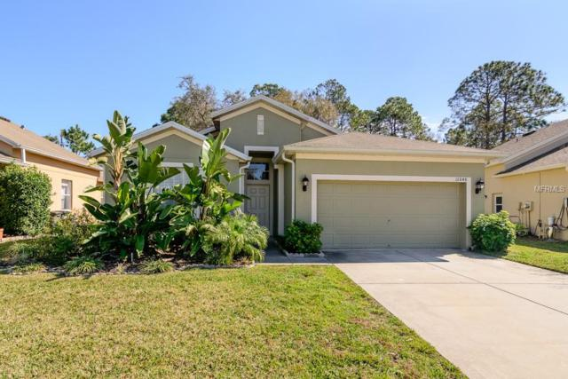 12848 Turnstone Court, Hudson, FL 34669 (MLS #W7809495) :: Keller Williams On The Water Sarasota