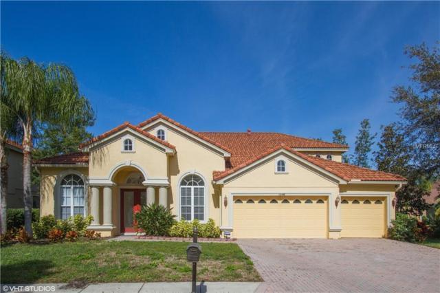 10441 Garda Drive, Trinity, FL 34655 (MLS #W7809511) :: Team Virgadamo