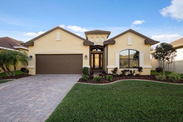 1115 Ketzal Drive, Trinity, FL 34655 (MLS #W7809542) :: Team Virgadamo