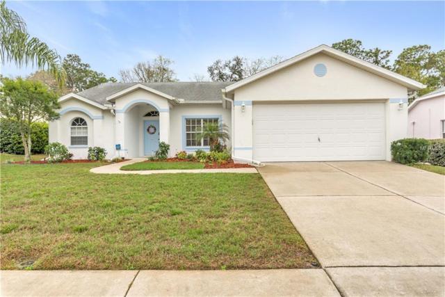 14419 Pimberton Drive, Hudson, FL 34667 (MLS #W7809565) :: Lovitch Realty Group, LLC