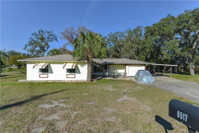 6517 Hillview Road, Spring Hill, FL 34606 (MLS #W7809581) :: Zarghami Group