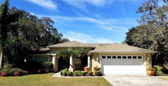 13343 Wrenwood Circle, Hudson, FL 34669 (MLS #W7809604) :: Team Virgadamo