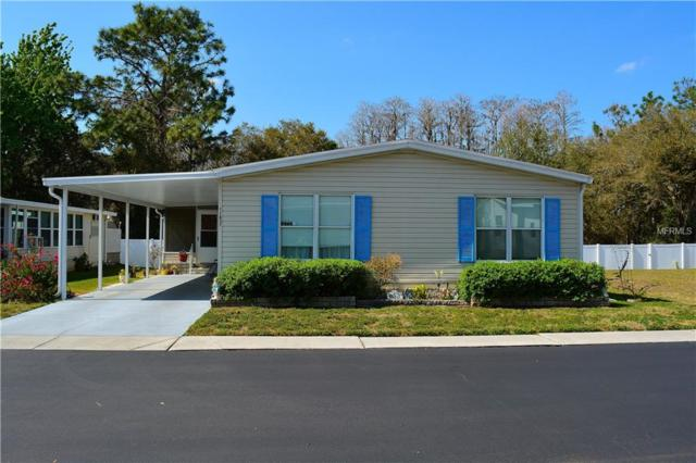 11637 Quincy Drive, New Port Richey, FL 34654 (MLS #W7809761) :: Team Bohannon Keller Williams, Tampa Properties