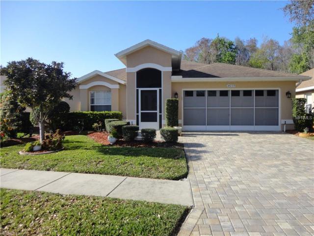 14039 Shoal Drive, Hudson, FL 34667 (MLS #W7809779) :: Team Bohannon Keller Williams, Tampa Properties