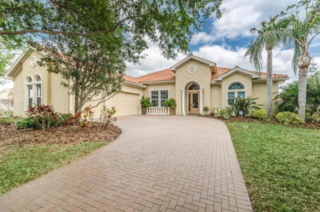 10701 Ruffino Court, Trinity, FL 34655 (MLS #W7809834) :: Griffin Group
