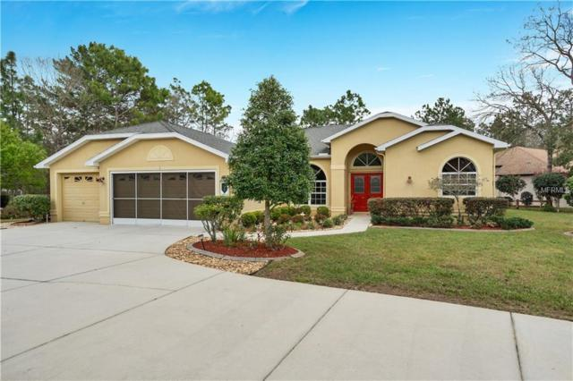1 Plumbago Drive, Homosassa, FL 34446 (MLS #W7809839) :: Mark and Joni Coulter   Better Homes and Gardens