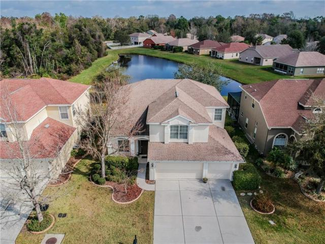 11219 Oyster Bay Circle, New Port Richey, FL 34654 (MLS #W7809852) :: Gate Arty & the Group - Keller Williams Realty