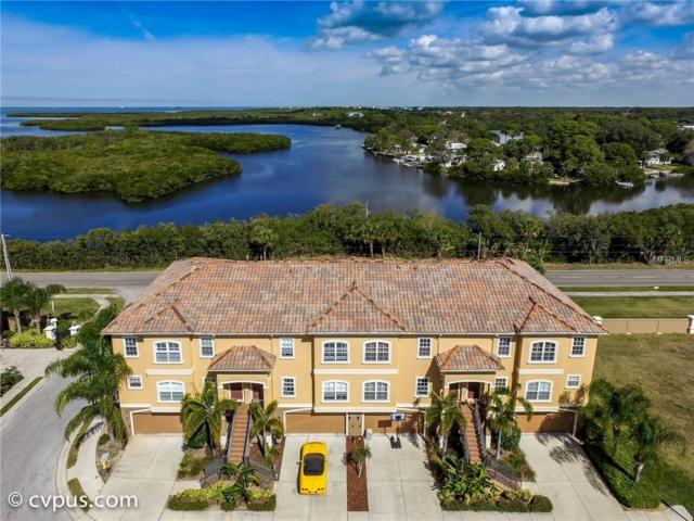 4543 Heron Landing, New Port Richey, FL 34652 (MLS #W7809867) :: Mark and Joni Coulter | Better Homes and Gardens