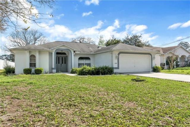 3024 Mandrell Avenue, Spring Hill, FL 34608 (MLS #W7809880) :: RE/MAX Realtec Group