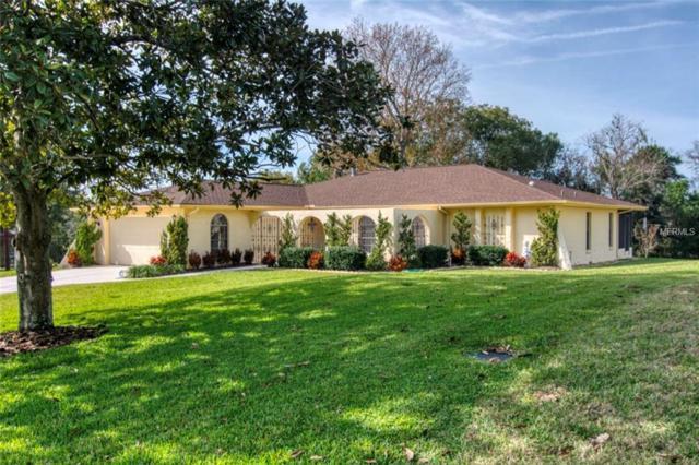 2419 Dubois Avenue, Spring Hill, FL 34609 (MLS #W7809891) :: RE/MAX Realtec Group