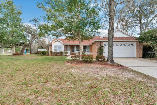 13410 Maureen Avenue, Spring Hill, FL 34609 (MLS #W7809909) :: RE/MAX Realtec Group